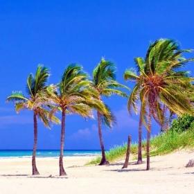 Chanel, Guerlain, le retour du luxe à Cuba