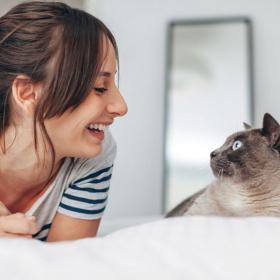 Ceux qui discutent avec leur chat seraient plus intelligents et plus sensibles que les autres