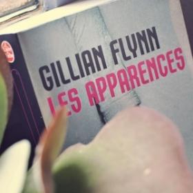 """Comparatif du roman """"Les Apparences"""" de Gillian Flynn et de son adaptation au cinéma"""