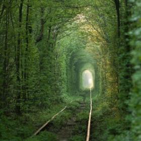 Le tunnel de l'amour en Ukraine : LA destination romantique