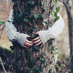 5 raisons pour lesquelles faire un câlin à un arbre est bon pour la santé