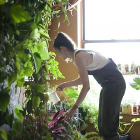 Cette jeune femme a planté plus de 500 plantes dans son appartement new-yorkais et l'a transformé en vrai jungle d'intérieur