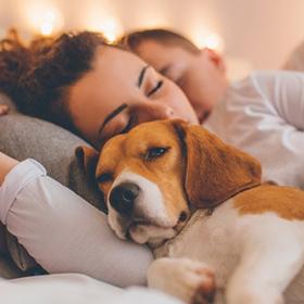 On dormirait beaucoup mieux avec son chien qu'avec sa moitié !