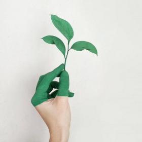 5 façons d'être éco-responsable