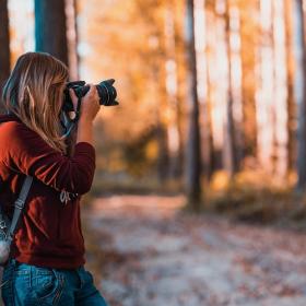 Nikon propose gratuitement des cours de photo en ligne