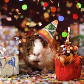 4 conseils pour préparer une fête d'anniversaire à la maison sans stress