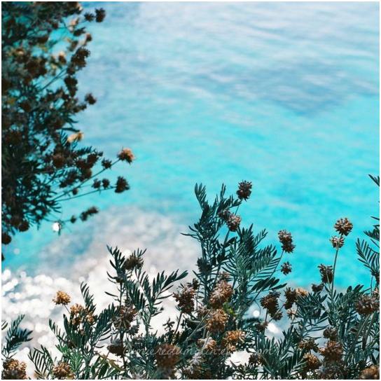 paysage mer Summer time !