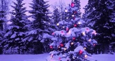 La Playlist pour un Noël qui bouge