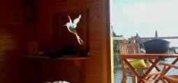 10 bonnes raisons de séjourner au village flottant de Pressac
