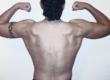 homme-muscle-torse-nu-beau