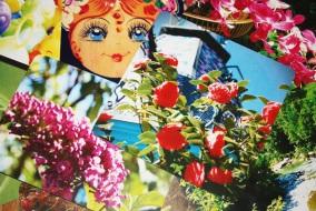 cartes-postales-mopiti-rose