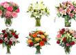floraqueen-fleurs