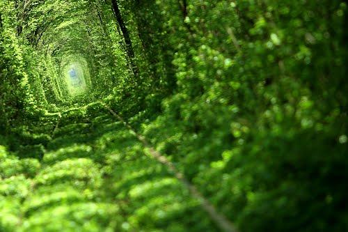 Tunnel-Love-Ukraine-4