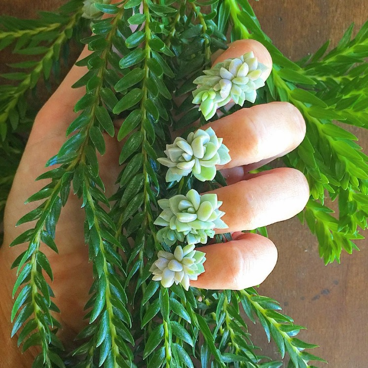 nail-art-succulentes-4