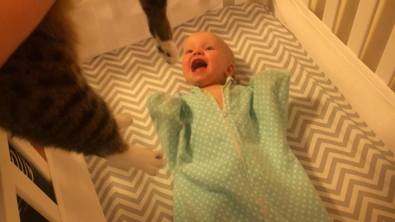 a-seulement-10-mois-ce-bebe-rit-aux-eclats-quand-il-voit-le-chat-3