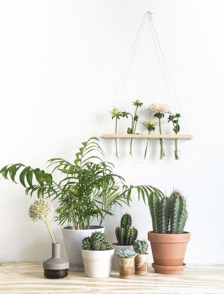 idee-deco-piece-lumineuse-lumiere-cactus