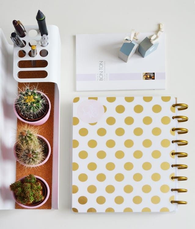 ranger-ses-affaires-conseils-cactus-stylos-carnet