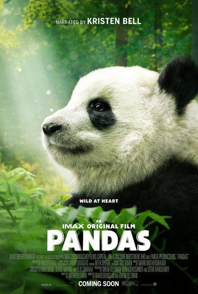 pandas-affiche