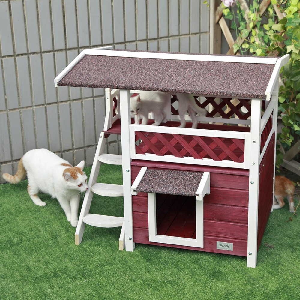 maison-chat-exterieure-arbre-a-chat-pas-cher-2