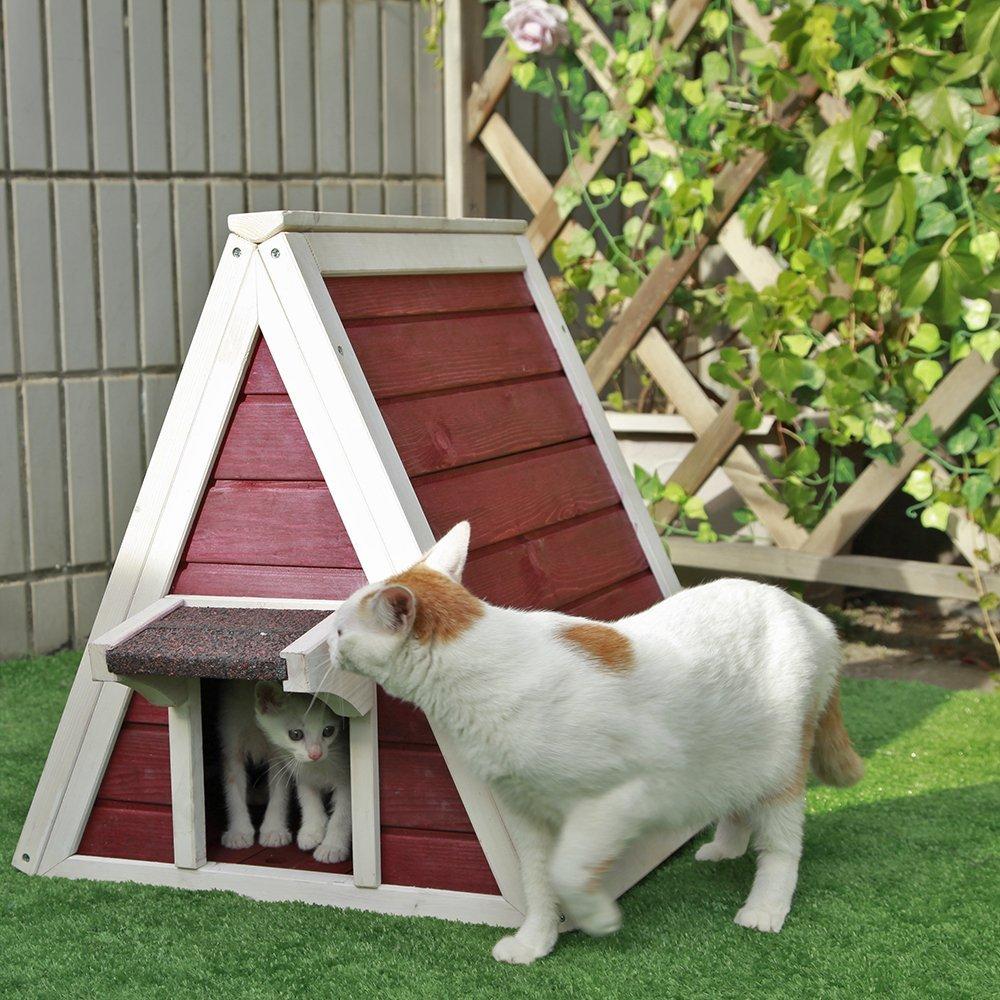maison-pour-chat-pas-cher-4