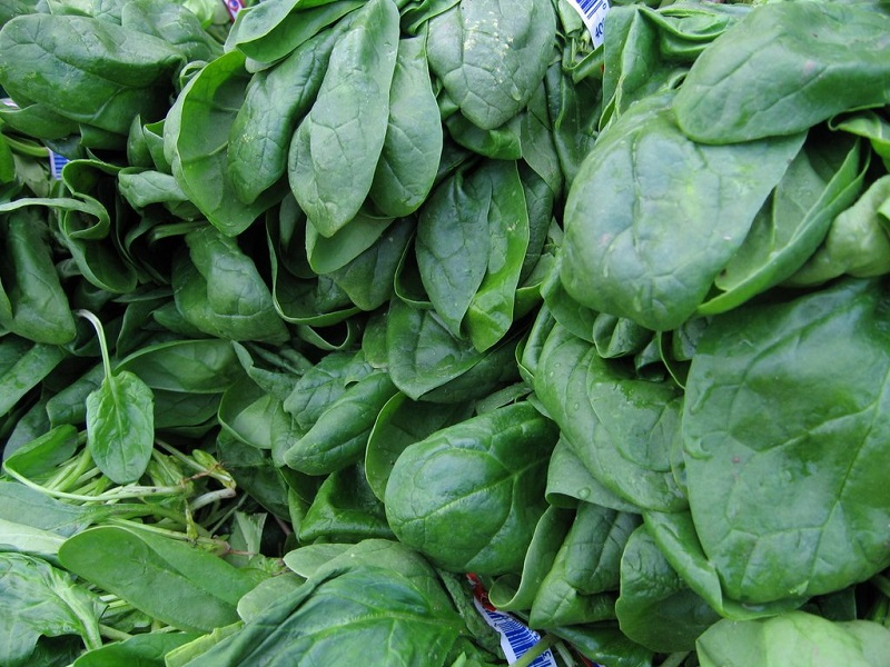 legumes-verts_1