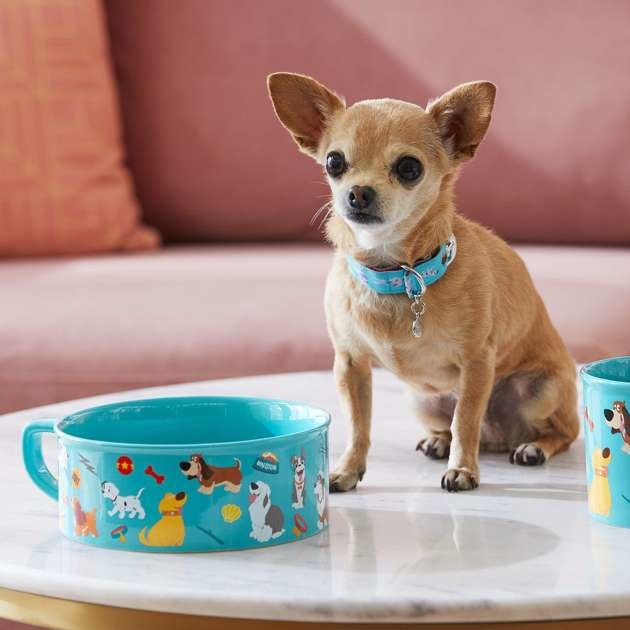 gamelle-chien-collier-collection-disney