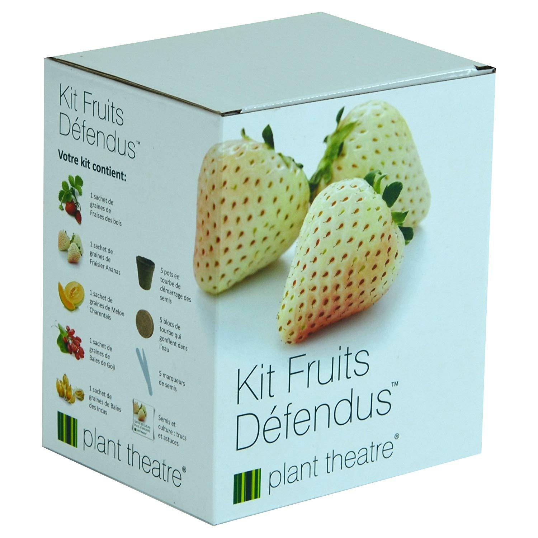 kit-fruits-defendus