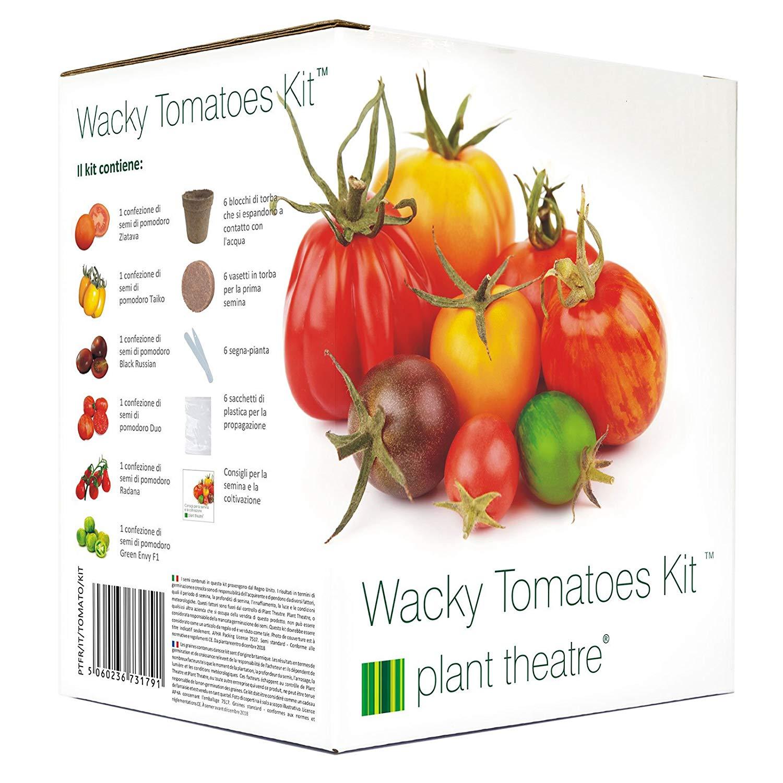 kit-tomates-farfelues