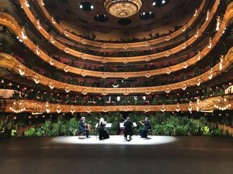 concert-opera-barcelone-devant-des-plantes-2