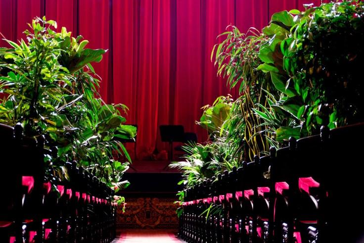 concert-opera-barcelone-devant-des-plantes-3