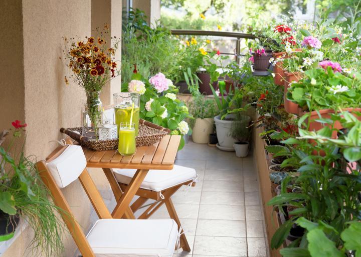 balcon-ombre-plantes-fleurs