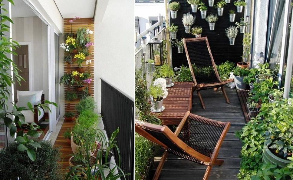 balcon-plantes